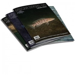 Lakesite articles